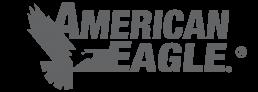 American Eagle Accessories logo.